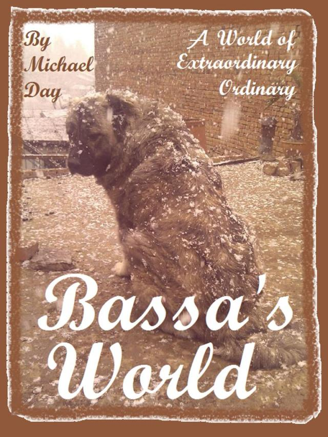 bassa's world cover image