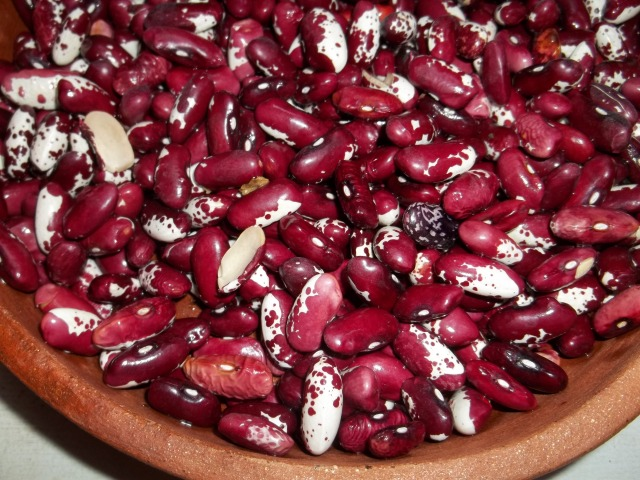 Kidney Beans for Lobio Recipe