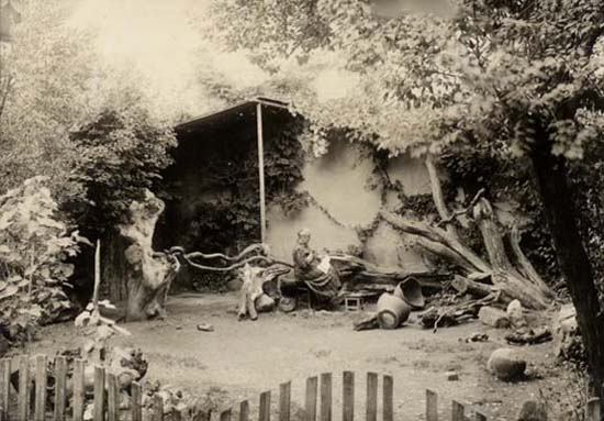 Vasil Roinashvili's garden