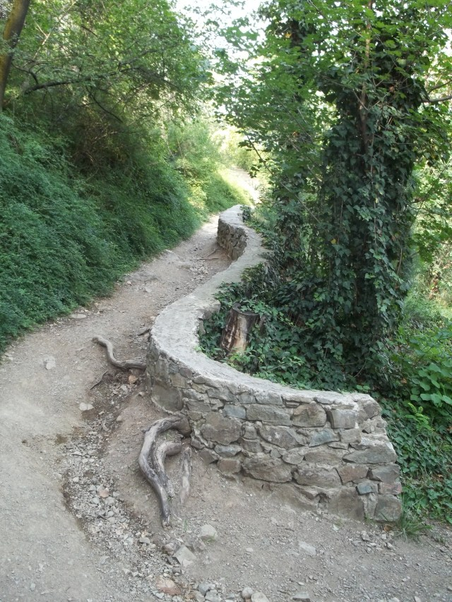 A Path at the National Botanical Garden of Georgia in Tbilisi