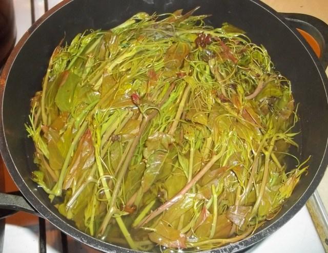 Boiling Ekala