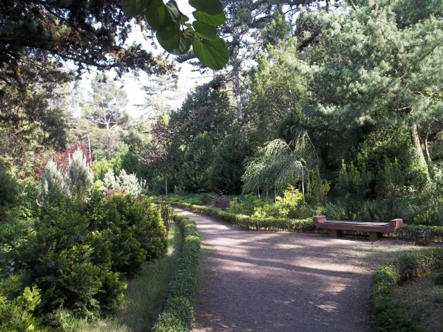 Pathway in the National Botanical Garden of Georgia in Tbilisi
