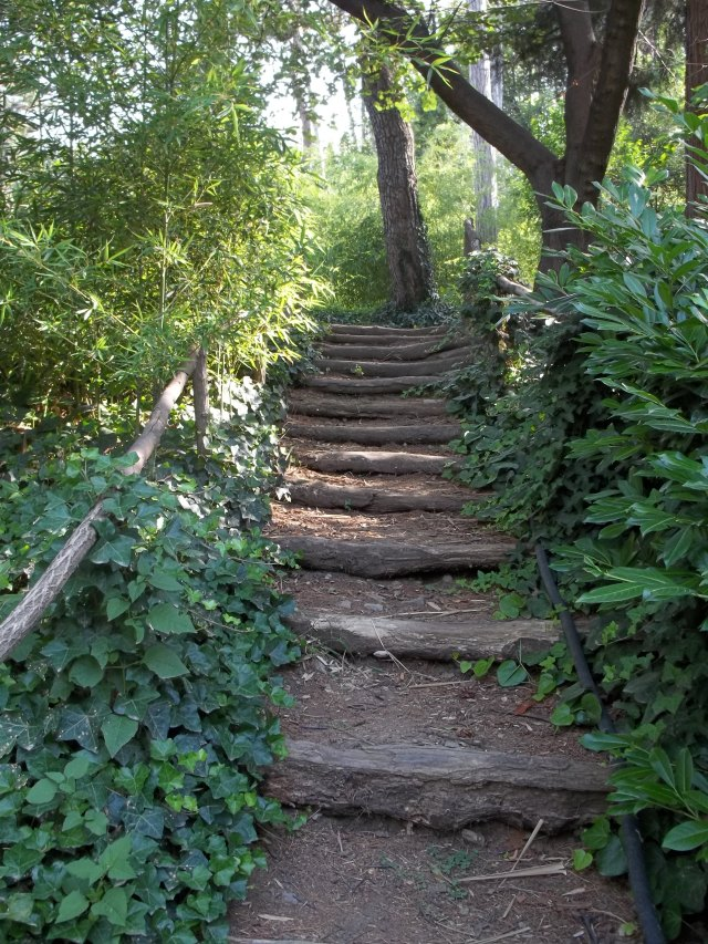 Steps at the National Botanical Garden of Georgia
