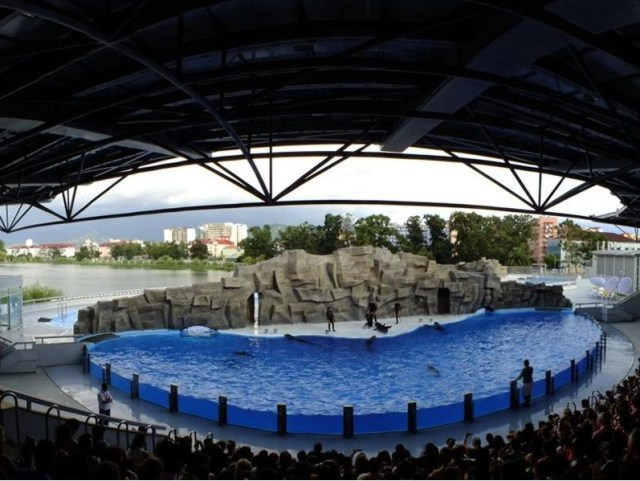 700 Seat Batumi Dolphinarium. Picture courtesy of 6 May Park
