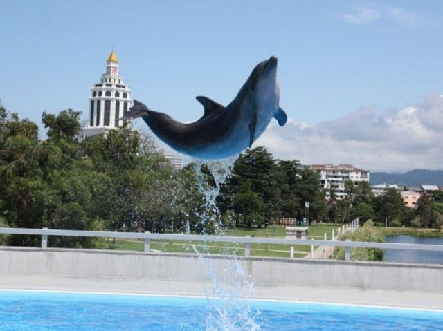 Batumi Dolphinarium. Picture courtesy of 6 May Park.