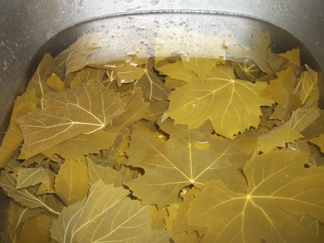 Boiled Vine Leaves for Tolma Recipe