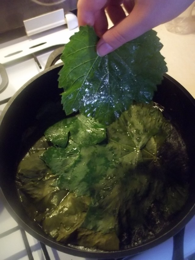 Putting Vine Leaves in the pot for Tolma Recipe