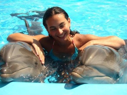 Swimming with Dolphins. Photo courtesy of 6 May Park