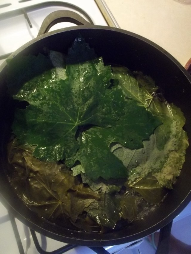 Vine Leaves ready for Boiling