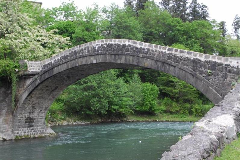 arched footbridge plans