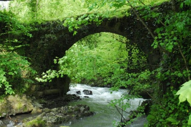 Chvana (Varjanuli) Stone Arch Bridge in Shuakhevi District of Ajara