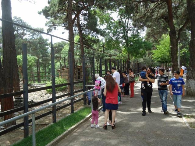 Tbilisi Zoo