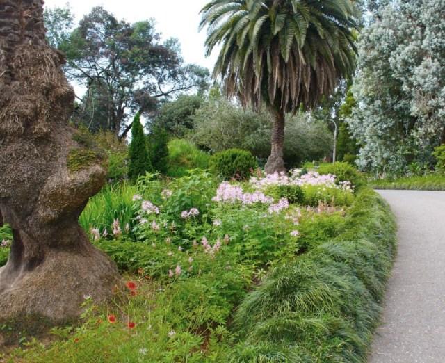 Batumi Botanical Garden. Photo courtesy of Batumi Botanical Garden_13