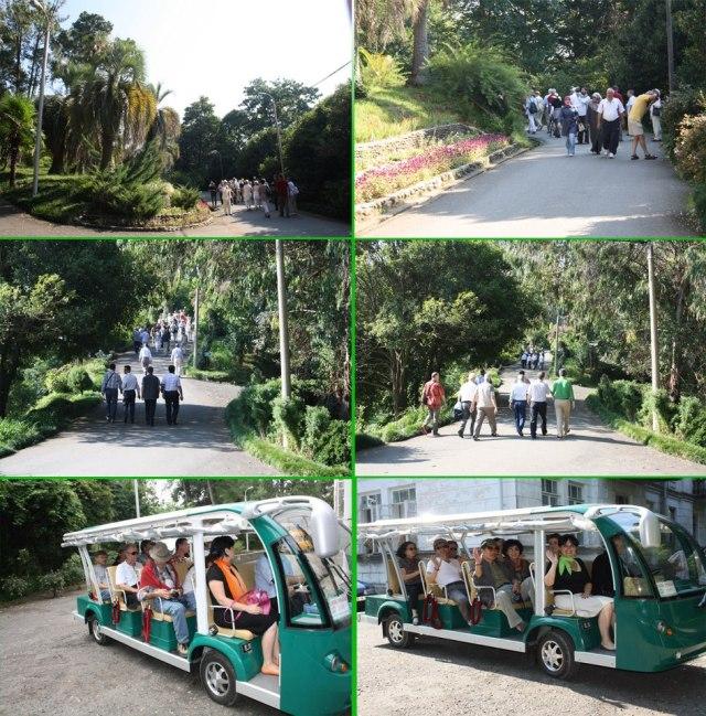 Batumi Botanical Garden. Photo courtesy of Batumi Botanical Garden_23