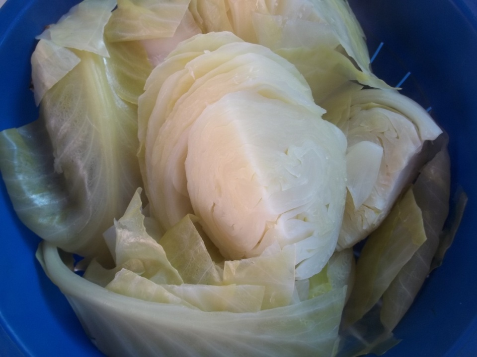 Chopped Cabbage - Copy