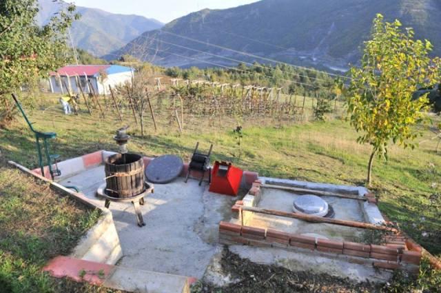 Ethnic Georgians Living in Turkey_5