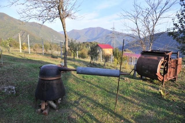 Ethnic Georgians Living in Turkey_9