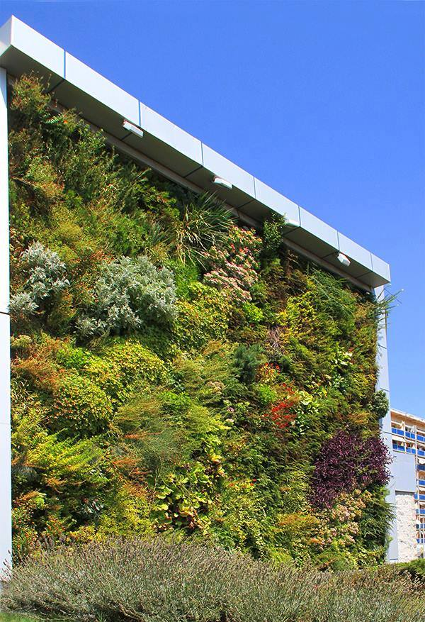 The Vertical Garden in Tbilisi.
