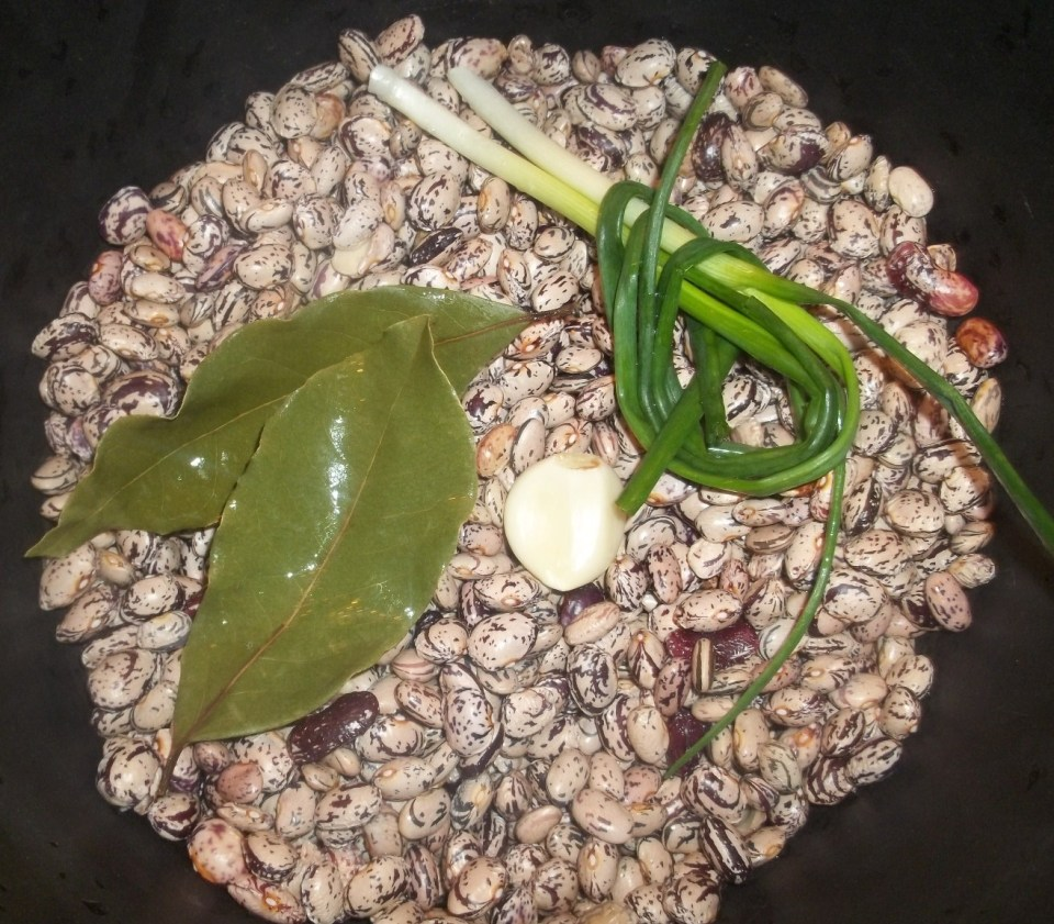 Boil lobio with green onion and garlic - Copy