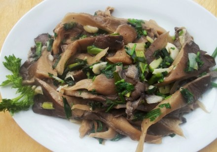 Oyster Mushrooms ready for Serving - Copy