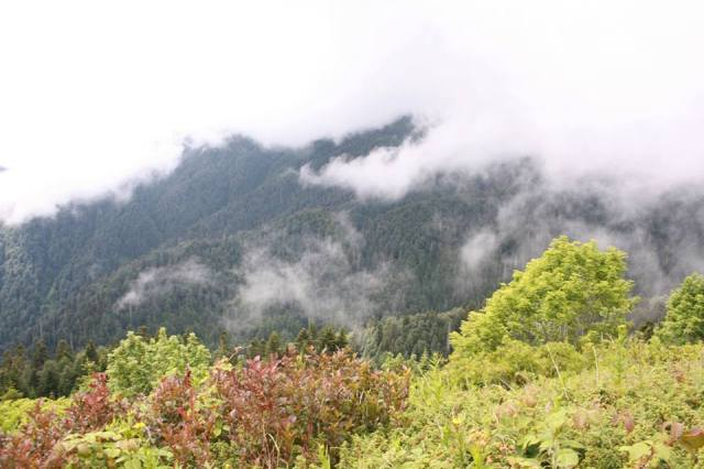 The Egrisi mountain range is often shrouded in cloud and mist