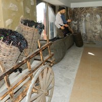 About Wine - Qvevri and Qvevri Wine Museum