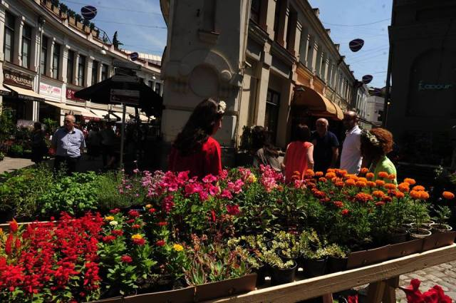 The Flower Festival in Tbilisi.