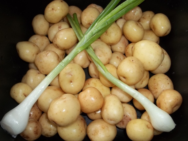 New Potatoes and Green Onion - Copy