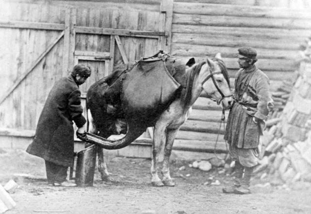 Selling water from large leather containers in 19th century Tiflis