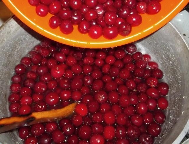 Adding Cherries - Copy
