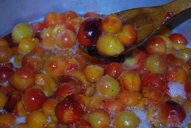 Add Plums to a deep pot - Copy