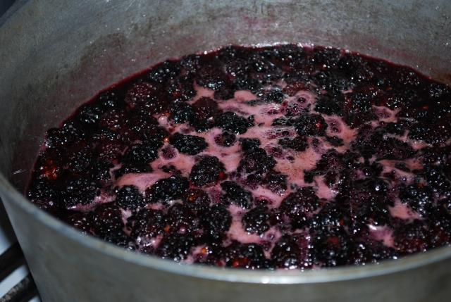 Making Blackberry Muraba - Copy