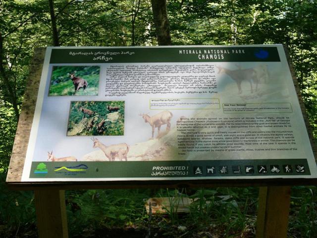 Wildlife information at Mtirala National Park