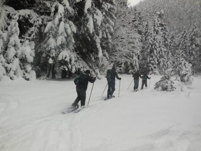 Visitors using the Snowshoe trail in Borjomi-Kharagauli National Park