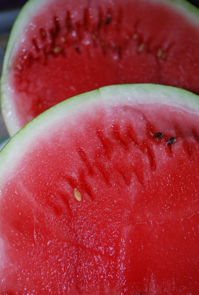 Thick Skinned Watermelon - Copy