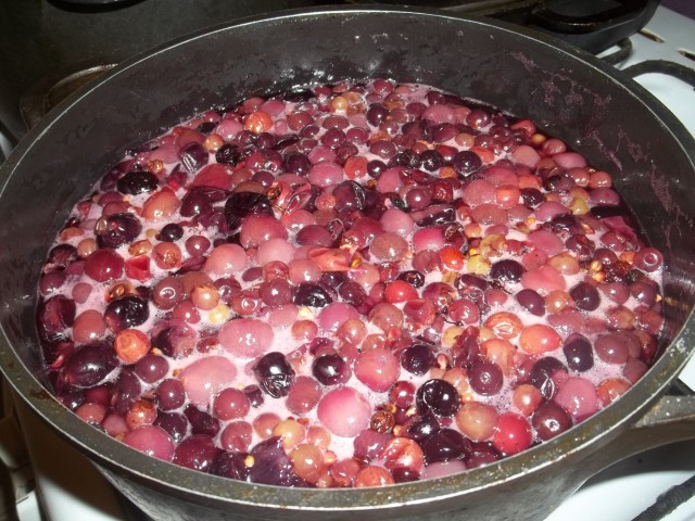 Boiling grapes - Copy