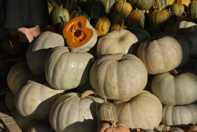 Pumpkins at the Dezerter Bazaar