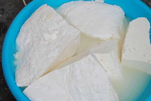 Cheese used to make Tenili - Copy