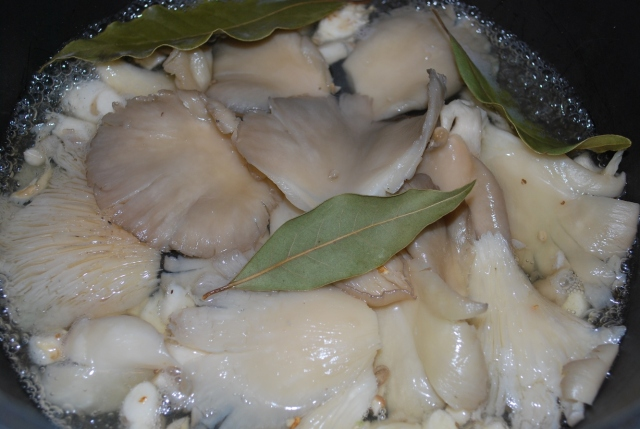 Cooking Oyster Mushrooms