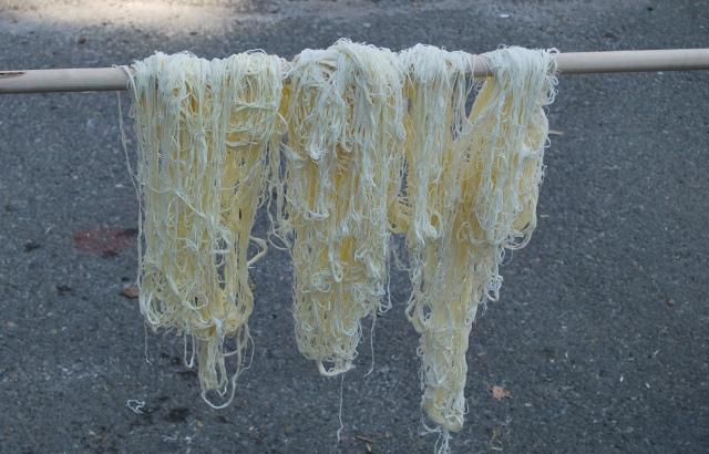 Drying Tenili Cheese - Copy