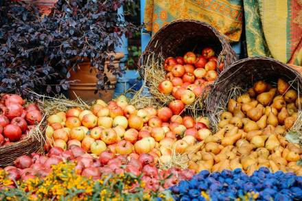 Autumn fruit display at Tbilisoba 2015