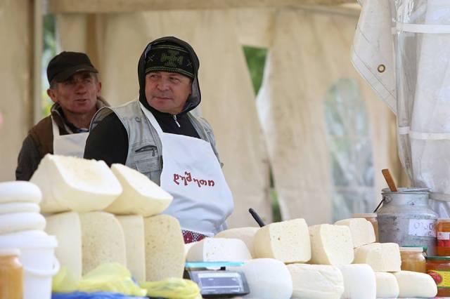 Over 60 types of cheese at the Caucasian Cheese 2015 festival in Rike Park